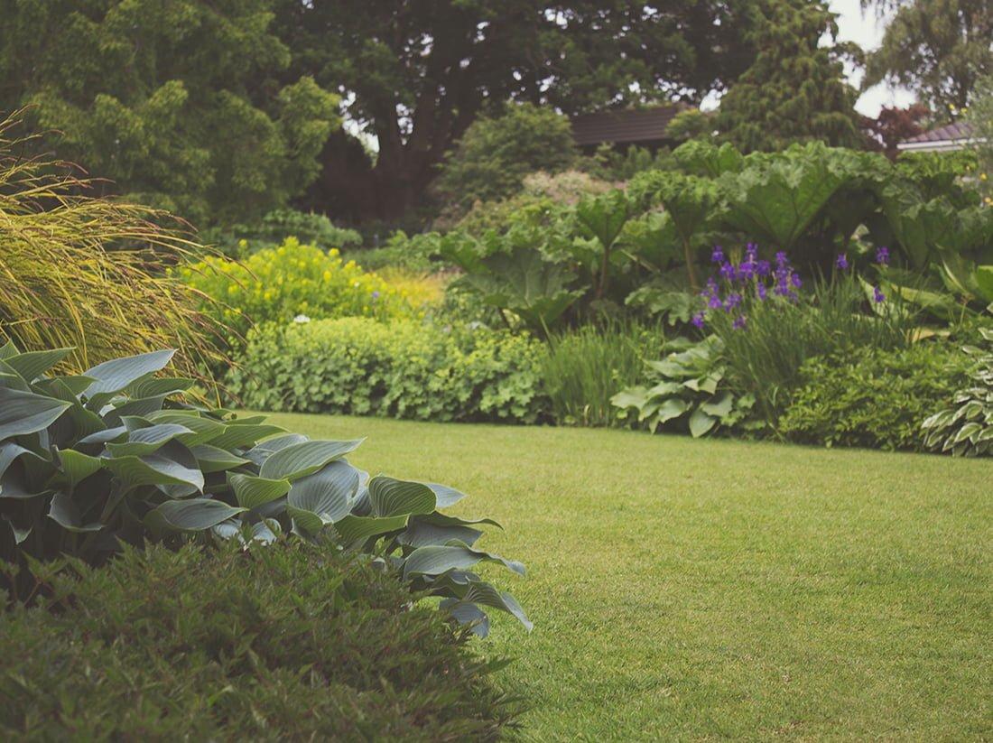 Tuinen van Mien Ruys in Dedemsvaart planten